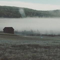 """""""Höstdimma""""Alicia Forsberg"""