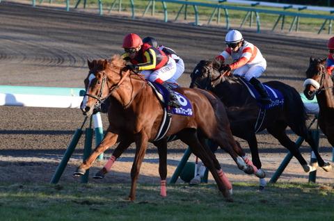 【競馬・中京5R新馬戦】アメリカンウェイク、弱すぎワロタwwwwww