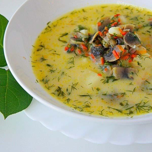 грибний вершковий суп