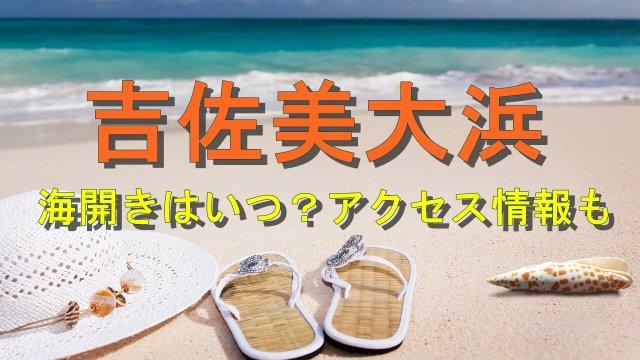 吉佐美大浜海水浴場の海開きとアクセス情報