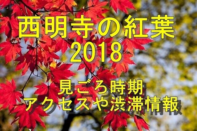 湖東三山 西明寺の紅葉2018の見ごろ時期