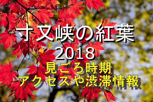 寸又峡の紅葉2018見ごろとアクセス情報