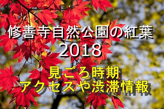 修善寺の紅葉2018見ごろ時期