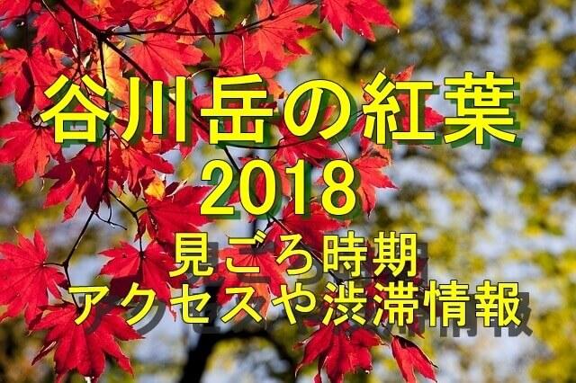 谷川岳の紅葉2018見ごろ時期とアクセス情報