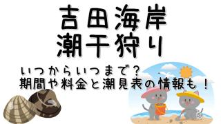 潮干狩り吉田海岸