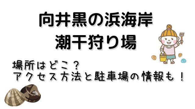 三重県の向井黒の浜海岸のアクセス方法や駐車場の情報をご紹介しています