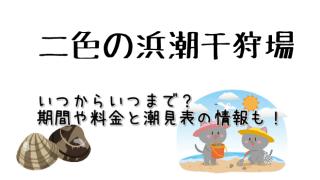二色の浜潮干狩り場の基本情報をご紹介しています