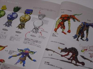 Bonus guide edition Collector Zelda