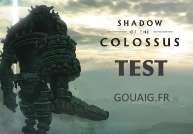 Test Shadow Of The Colossus PS4 Gouaig.fr