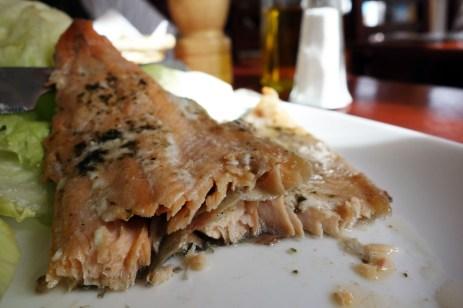 Trout in Chaltén: Trucha Patagónica