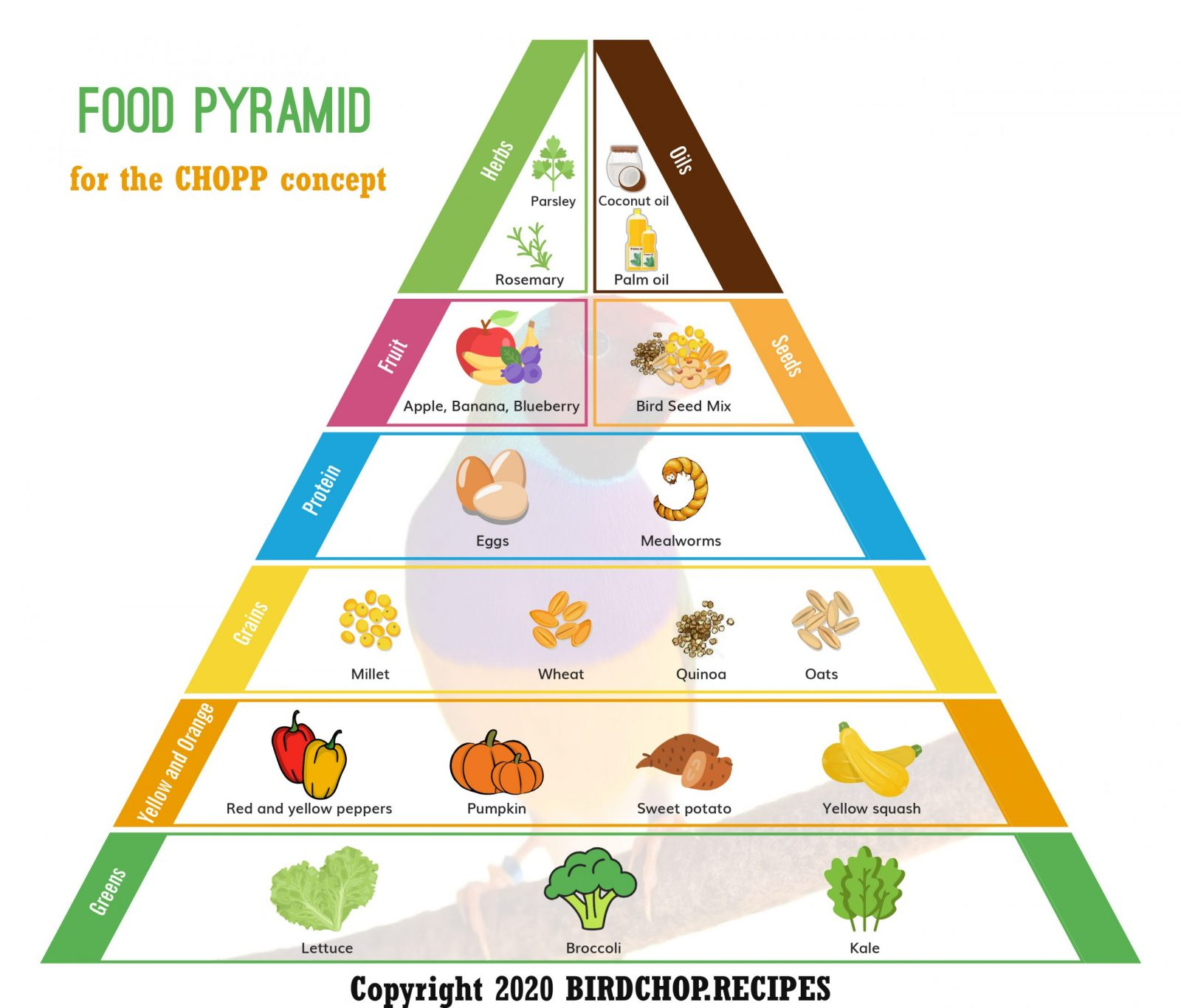 Chopp And The Food Pyramid