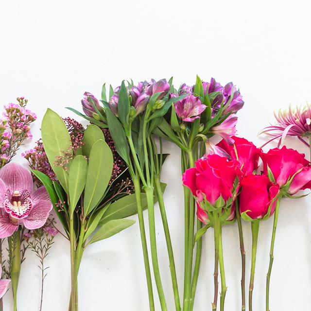 Blomsterlexikon