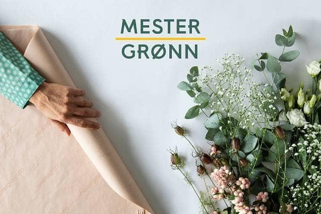 Send blomster med Mester Grønn