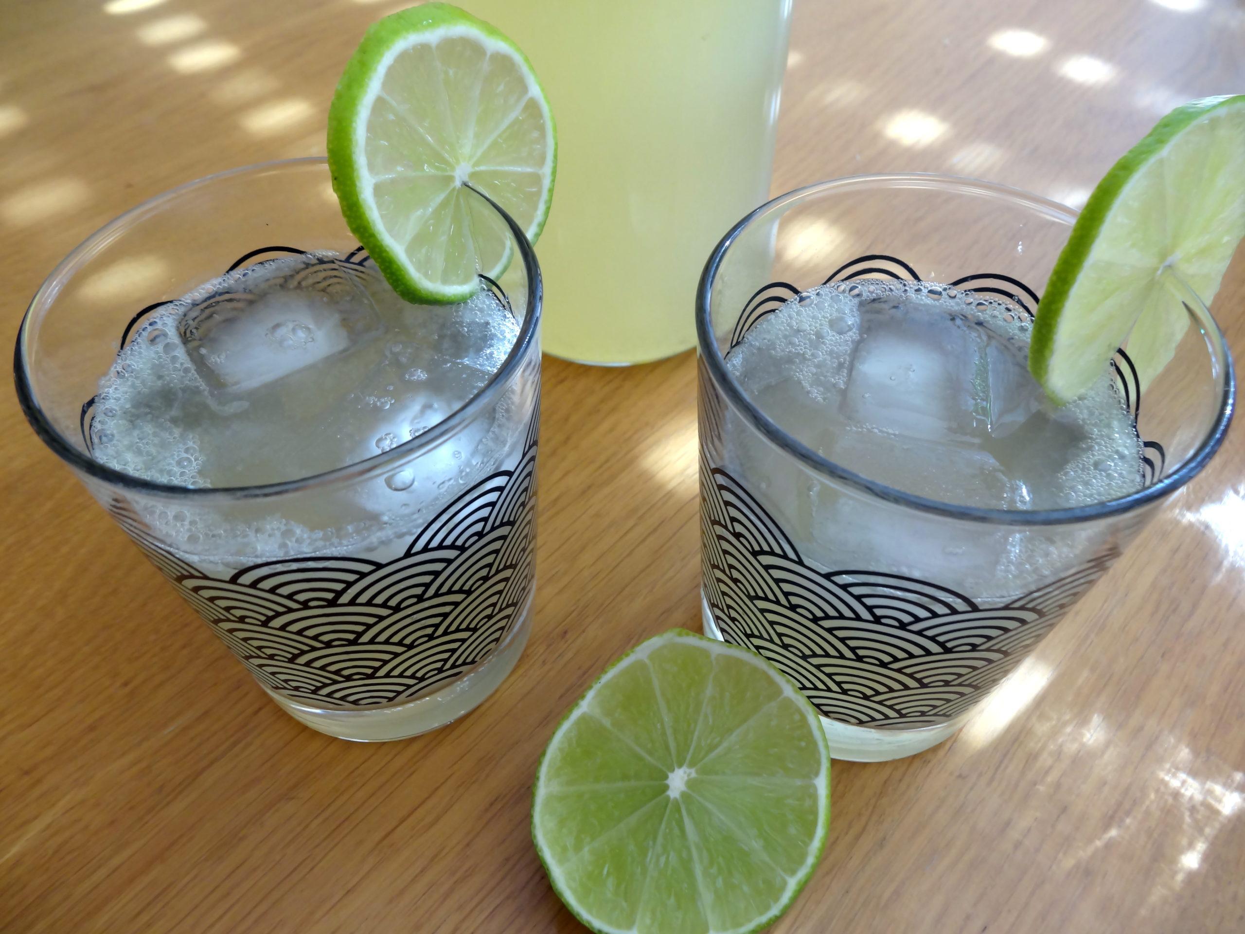 Photo de limonade maison pour accéder à la recette
