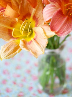 Day lilies in vase
