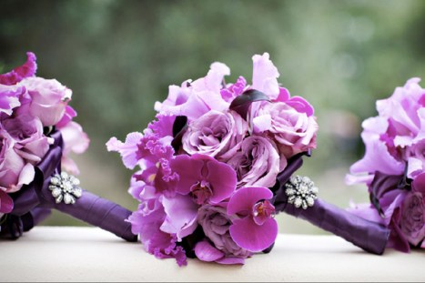 Many flowers capture the romance and joy of radiant orchid. Even if they're not orchids.