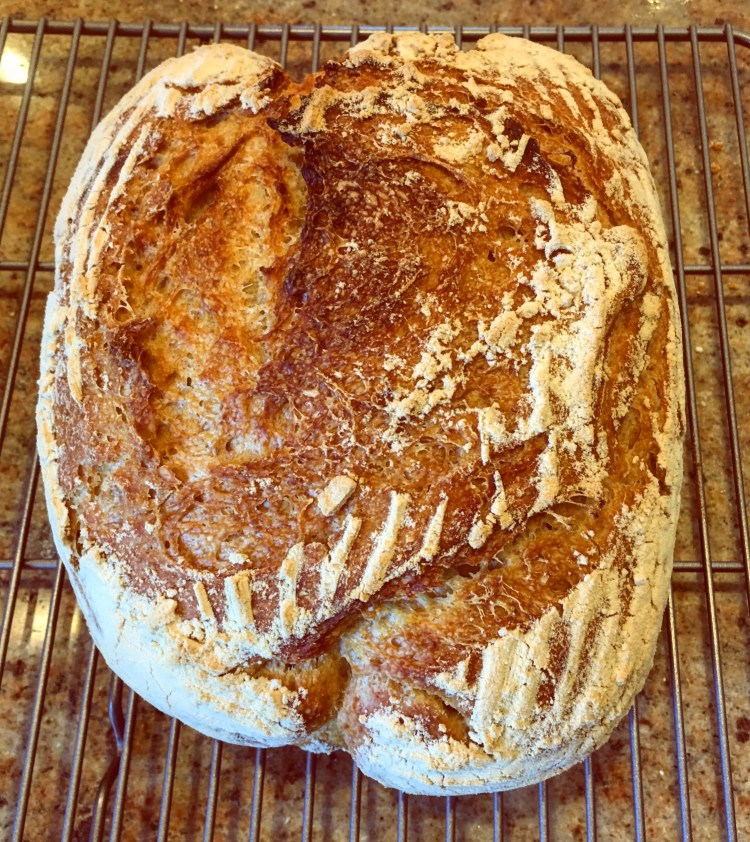 Organic Sourdough Bread loaf