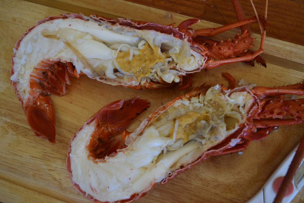 Crayfish-halves-not-cleaned-141121