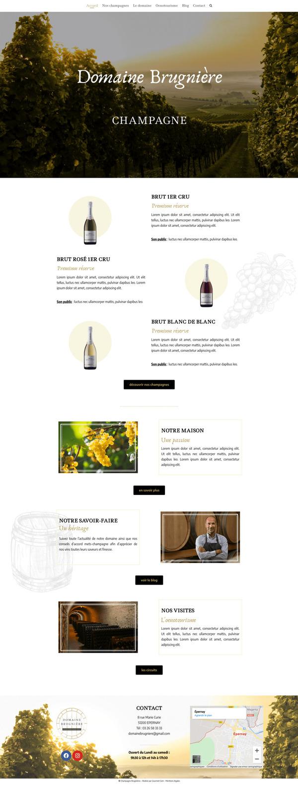 Maquette de création de site internet pour un vignoble en champagne avec le package Pro