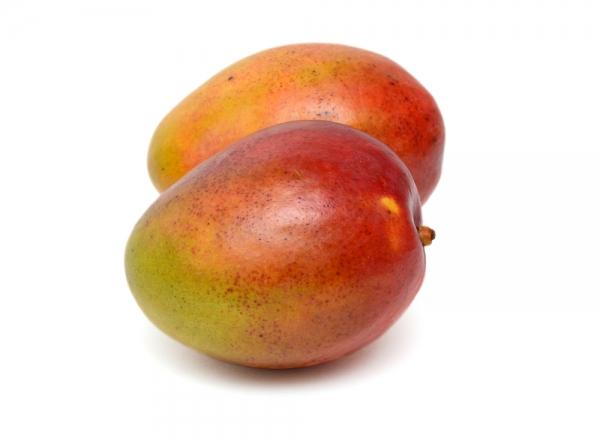 types of haden mexican mango