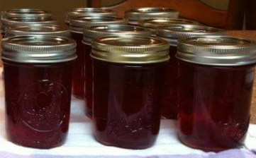 cranberry orange jelly