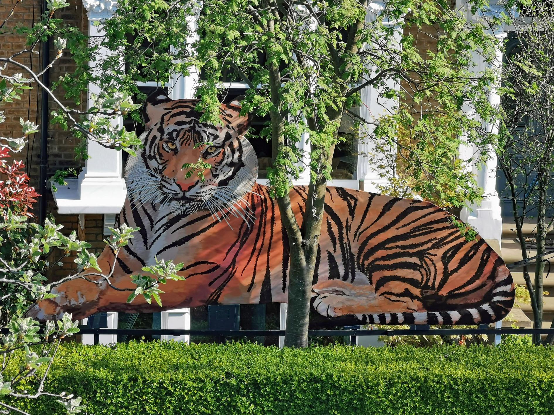Tiger installation