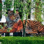 Tiger installation