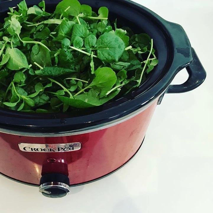 receta olla cocción lenta crock pot sopa de berros canaria