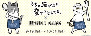 大人気漫画とのコラボカフェが初めて実現 『うちの猫がまた変なことしてる。×ハンズカフェ』 2018年9月19日(水)~10月31日(水)期間限定オープン