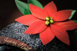 深紅のポインセチアやトナカイをイメージした バラエティ豊かなラインナップ!! カファレルクリスマスケーキコレクション2018