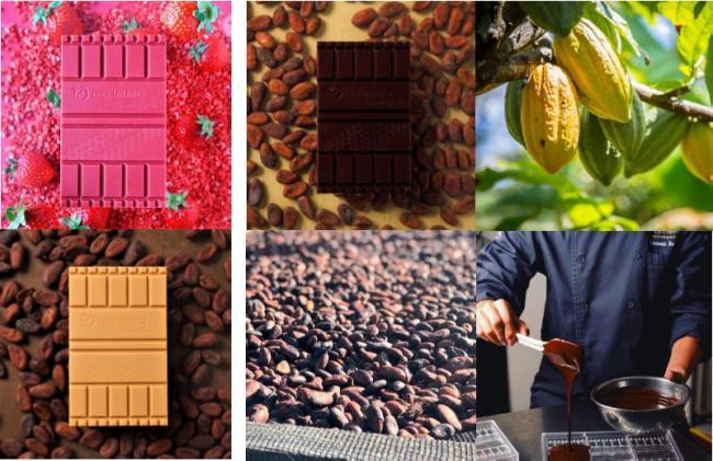 """カカオ豆の世界的産地から厳選した「デリーモオリジナルショコラ」 """"全21種""""のタブレット型ショコラから選べるスペシャルバレンタイン 『タブレットショコラ』本格販売開始"""