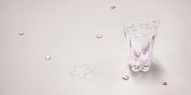 桜の季節に『サクラサクグラス』今ならお花見に便利な手拭いプレゼント