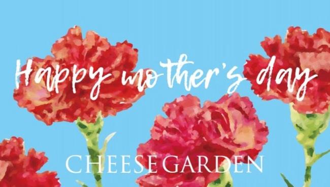 チーズ好きお母さんも喜ぶ 母の日お薦めチーズ菓子ギフト