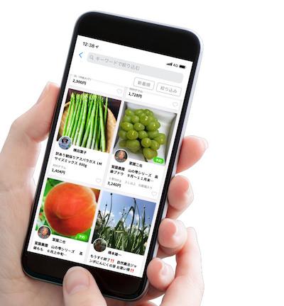 食のCtoCマーケット「ポケットマルシェ」、 生産者の需要予測に役立つ「予約注文機能」をリリース
