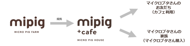 mipigとmipig cafeのつながり