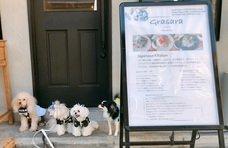 【勝どき】Dogfriendly 『Grasara』が1Fのバースペースのご利用にて、犬連れのご案内が可能となりました。 [PR]