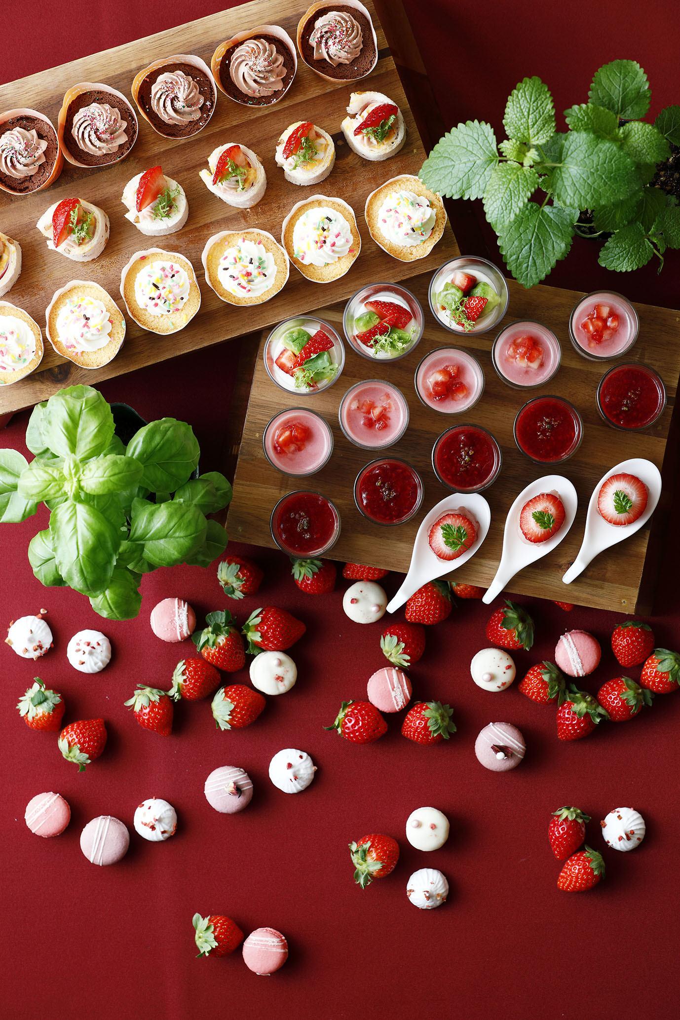京都ブライトンホテルでハーブと苺のマリアージュを楽しむ! 『ストロベリーブッフェ』を2020年2月開催  1月20日はモニターとしてメニューを楽しめるプレ開催を実施