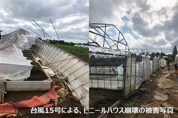 イー・有機生活、「がんばれ!千葉・がんばれ!山武」応援プロジェクト開始。千葉県産原料を使った商品を発売し、その売上からの寄付。千葉県台風被害・農業応援