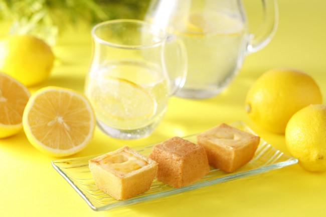 『夏のチーズケーキ(レモン)』イメージ(パケなし)②