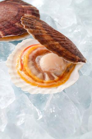陸奥湾の豊かな栄養で育ったホタテは、旨味が凝縮されています