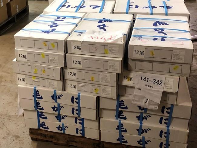 在庫になっている北海道産の毛蟹7000尾
