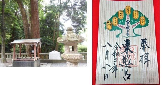 左:金の成る木 右:金の成る木御朱印