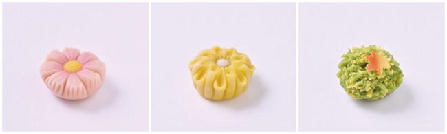 甘糀上生菓子 左から「秋桜(こすもす)」「菊寿(きくじゅ)」「初もみじ」