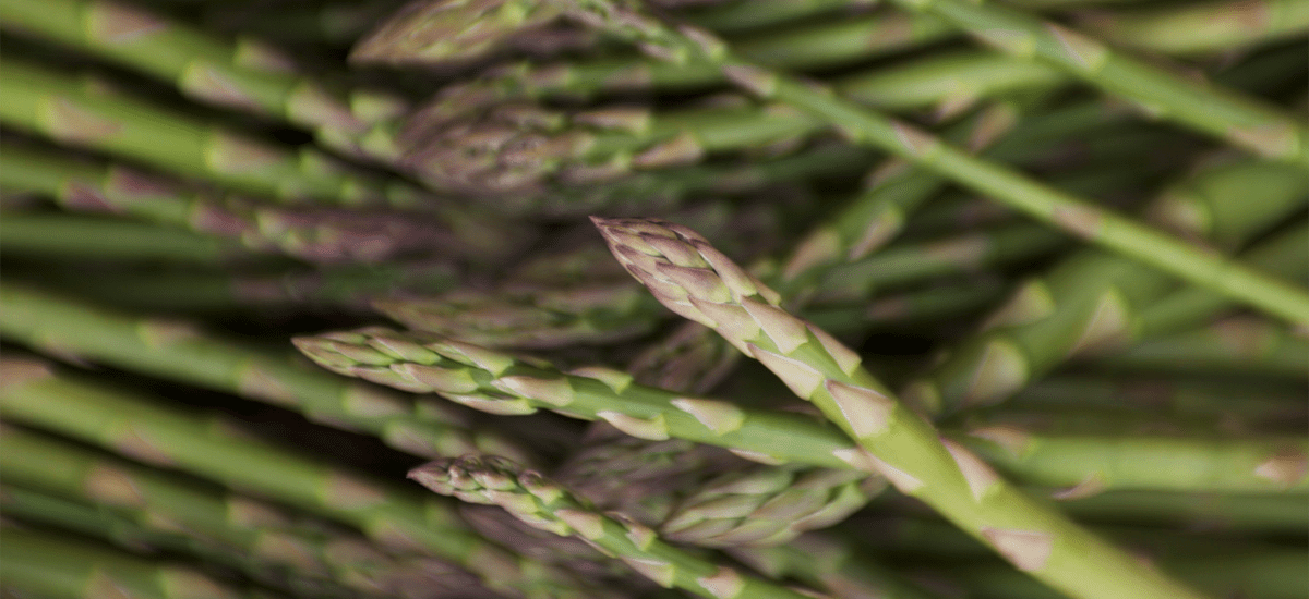 worldwide-year-round-asparagus