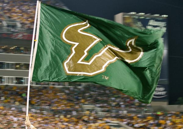 Image result for usf flag