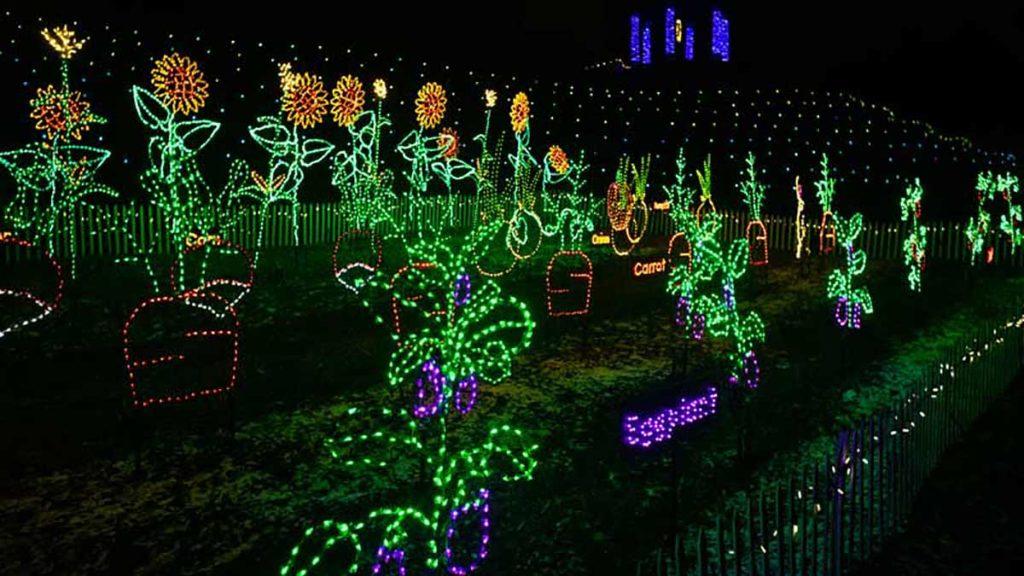 wps garden of lights 20 years of lighting up green bay