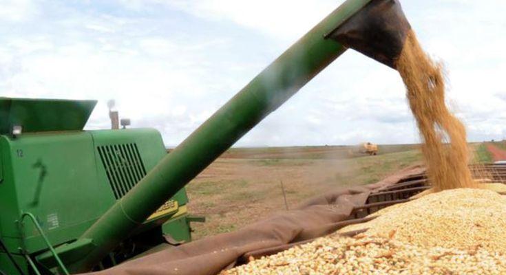 Produção agrícola de 2018 tem valor recorde de R$343,5 bilhões