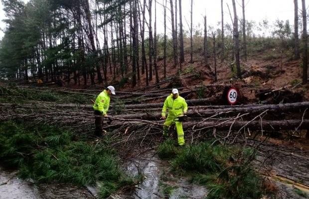 Governo do Estado atua para minimizar danos de ciclone extratropical em Santa Catarina