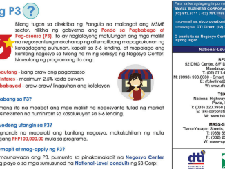 P3 Lending Program of DTI