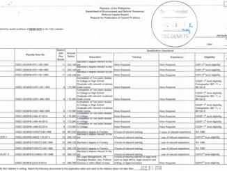 Permanent Positions in DENR-NCR until June 1, 2018